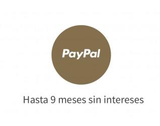 9 meses con PayPal